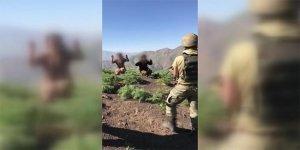 Hakkari ve Şırnak'ta 5 terörist teslim oldu