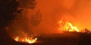 İzmir'de yangın çıktı! Kontrol altına alınamıyor!