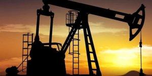 Petrol 7 haftanın zirvesinden yükseldi
