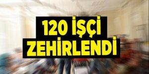 Sakarya'da 120 işçi zehirlendi