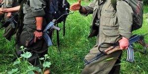 PKK'nın 'Türkiye mali alan sorumlusu' tutuklandı!