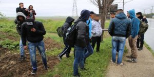 Sığınmacı ve kaçaklar yakalandı