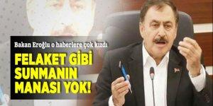 Bakan Eroğlu o haberlere çok kızdı