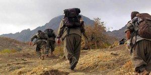 Şırnak'ta PKK'lı terörist etkisiz hale getirildi