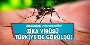 Bakan açıkladı: Zika virüsü Türkiye'de görüldü!
