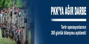 Terör operasyonlarının 265 günlük bilançosu açıklandı