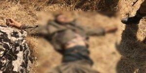 Tunceli'de 5 terörist daha etkisiz hale getirildi