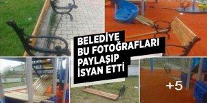 Belediye fotoğrafları paylaşıp isyan etti