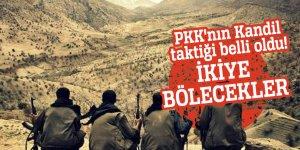 PKK'nın Kandil taktiği belli oldu! İkiye bölecekler
