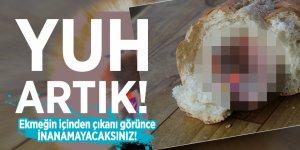 Ekmeğin İçinden çıkanı görünce inanamayacaksınız!