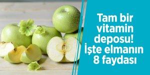 Tam bir vitamin deposu! İşte elmanın 8 faydası