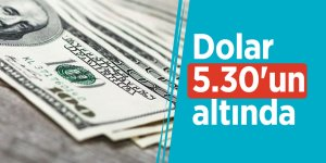 Dolar 5.30'un altında