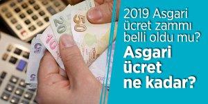 2019 Asgari ücret zammı belli oldu mu? Asgari ücret ne kadar?