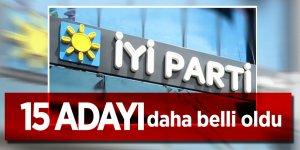 İYİ Parti'nin 15 adayı daha belli oldu