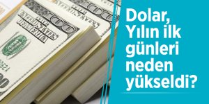 Dolar, Yılın ilk günleri neden yükseldi?