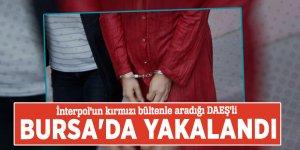 İnterpol'un kırmızı bültenle aradığı DAEŞ'li Bursa'da yakalandı
