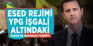 Esed rejimi, YPG işgali altındaki Rakka'ya operasyon başlattı