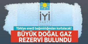 Meral Akşener Koray Aydın ve Dursun Müsavat Dervişoğlu'nun istifasını istedi.