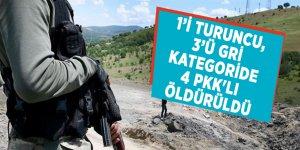 İçişleri Bakanlığı açıkladı! 1'i Turuncu, 3'ü Gri kategoride 4 PKK'lı öldürüldü