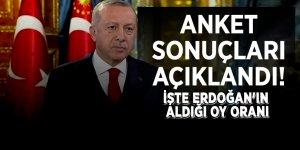 Anket sonuçları açıklandı! İşte Erdoğan'ın aldığı oy oranı