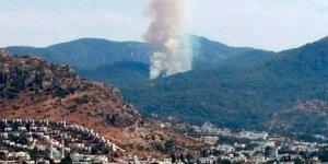 Bodrum'da ormanlık alanda yangın! Ekipler sevk edildi