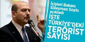 Soylu açıkladı! İşte Türkiye'deki terörist sayısı