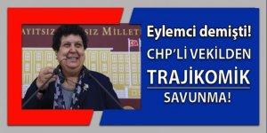 Teröriste eylemci diyen CHP'li vekilden trajikomik savunma!