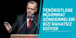 """Başkan Erdoğan: """"Teröristlere mühimmat göndermeleri bizi rahatsız ediyor"""""""