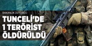 Bakanlık duyurdu: Tunceli'de 1 terörist öldürüldü