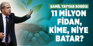 Şamil Tayyar sordu: 11 milyon fidan, kime, niye batar?