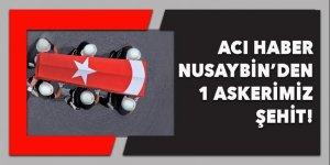 Acı haber Nusaybin'den! 1 şehit