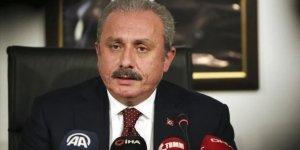 TBMM Başkanı Şentop: Terörle mücadelemiz kararlılıkla devam etmektedir