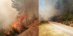 Adana Kozan'da orman yangını! Ekipler müdahale ediyor