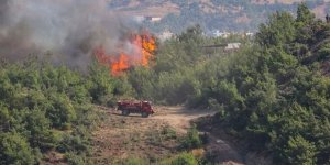 Hatay'daki orman yangınlarıyla ilgili 2 tutuklama