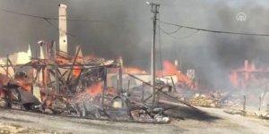 Bolu'da Kuzfındık köyünde yangın!
