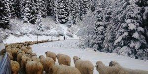 Meteoroloji uyardı! İki ilde kar bekleniyor