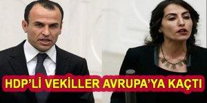 Dokunulmazlık korkusu HDP'li vekillere Türkiye'yi terk ettirdi!