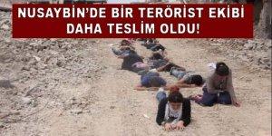Nusaybin'de bir grup terörist daha devlete teslim!