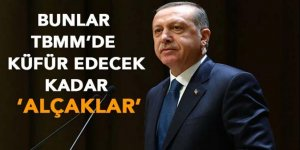 Erdoğan: 'Bunlar TBMM'de küfredecek kadar alçaldılar'