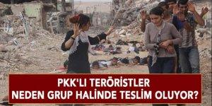PKK'lı teröristler  neden grup halinde teslim oluyor?