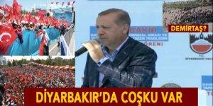 İşte Diyarbakır'ın sesi, İşte Diyarbakır'ın coşkusu