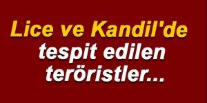 Lice ve Kandil'de tespit edilen teröristler...