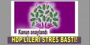 Erdoğan kanunu onayladı, HDP'lileri stres bastı!
