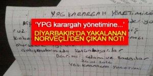 Diyarbakır'da yakalanan Norveçli'den çıkan nota bakın!