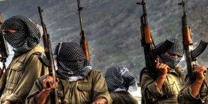 İşte PKK'lı teröristlerin cezası!