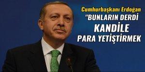 Cumhurbaşkanı Erdoğan: Bunların derdi Kandil'e para yetiştirmek
