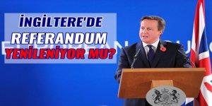 İngiltere'de AB referandumunun yinelenmesi için kampanya başlatıldı