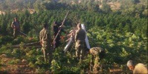 PKK'ya 5 gündür süren operasyonlarda büyük darbe!