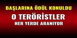 Adıyaman kırsalındaki teröristlerin listesi yayınlandı