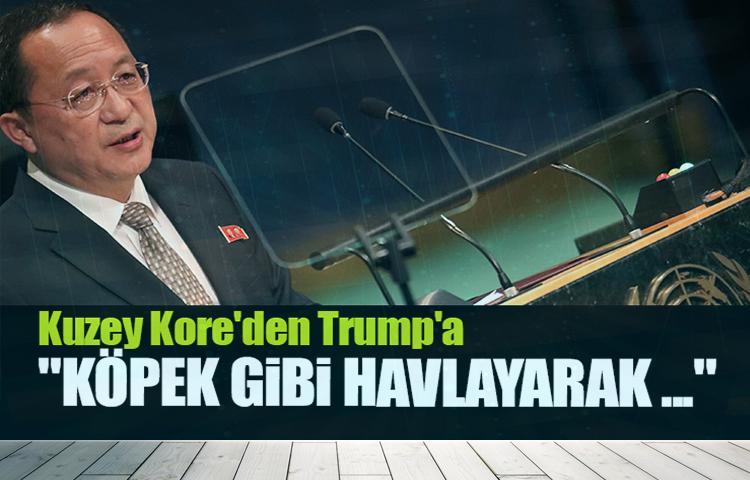 Kuzey Kore'den Trump'a 'havlayan köpek' benzetmesi